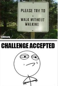 challenge-accepted-meme-dumpaday-17